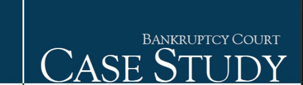 Debtor Bankruptcy Court Case Analysis